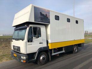 грузовик коневоз MAN LE8-180